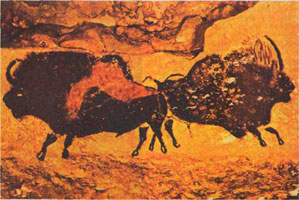 Зубры (пещерная живопись)